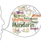 Why do human beings speak so many languages?